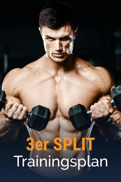 3er-Split Muskelaufbau Trainingsplan kostenlos als PDF herunterladen