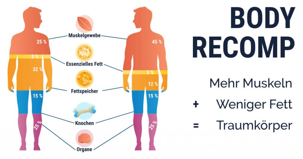 Body Recomposition: Was bedeutet das? Gleichzeitiger Muskelaufbau und Fettabbau