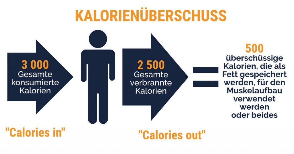Schneller Masseaubfau mit der simplen Logik des Kalorienüberschusses