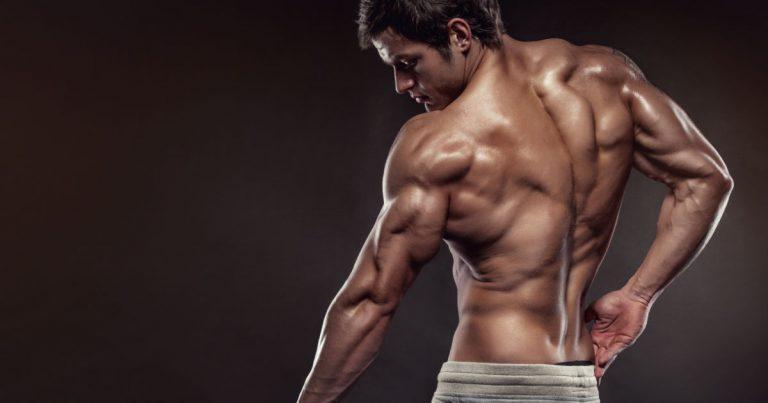 Beste Rückenübungen für einen muskulösen Rücken