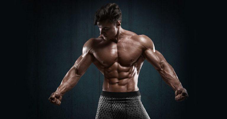 Anaboles Fenster und Muskelaufbau, Protein-Timing
