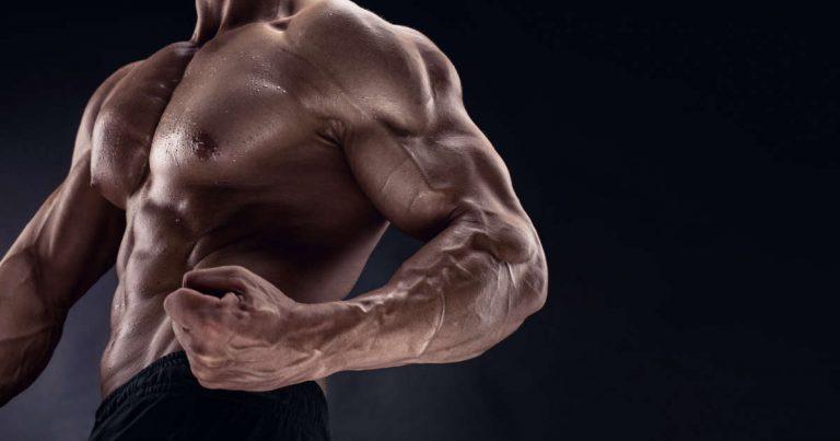 Muskelabbau verhindern während Trainingspaus